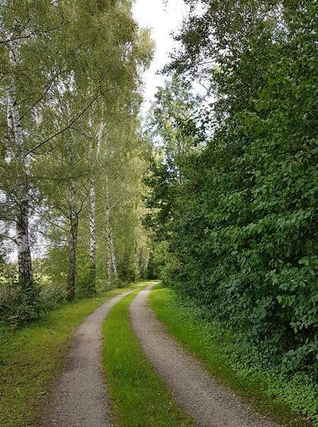Wege um die Seen